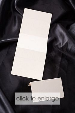 Strip of 3 Place Cards - Cream